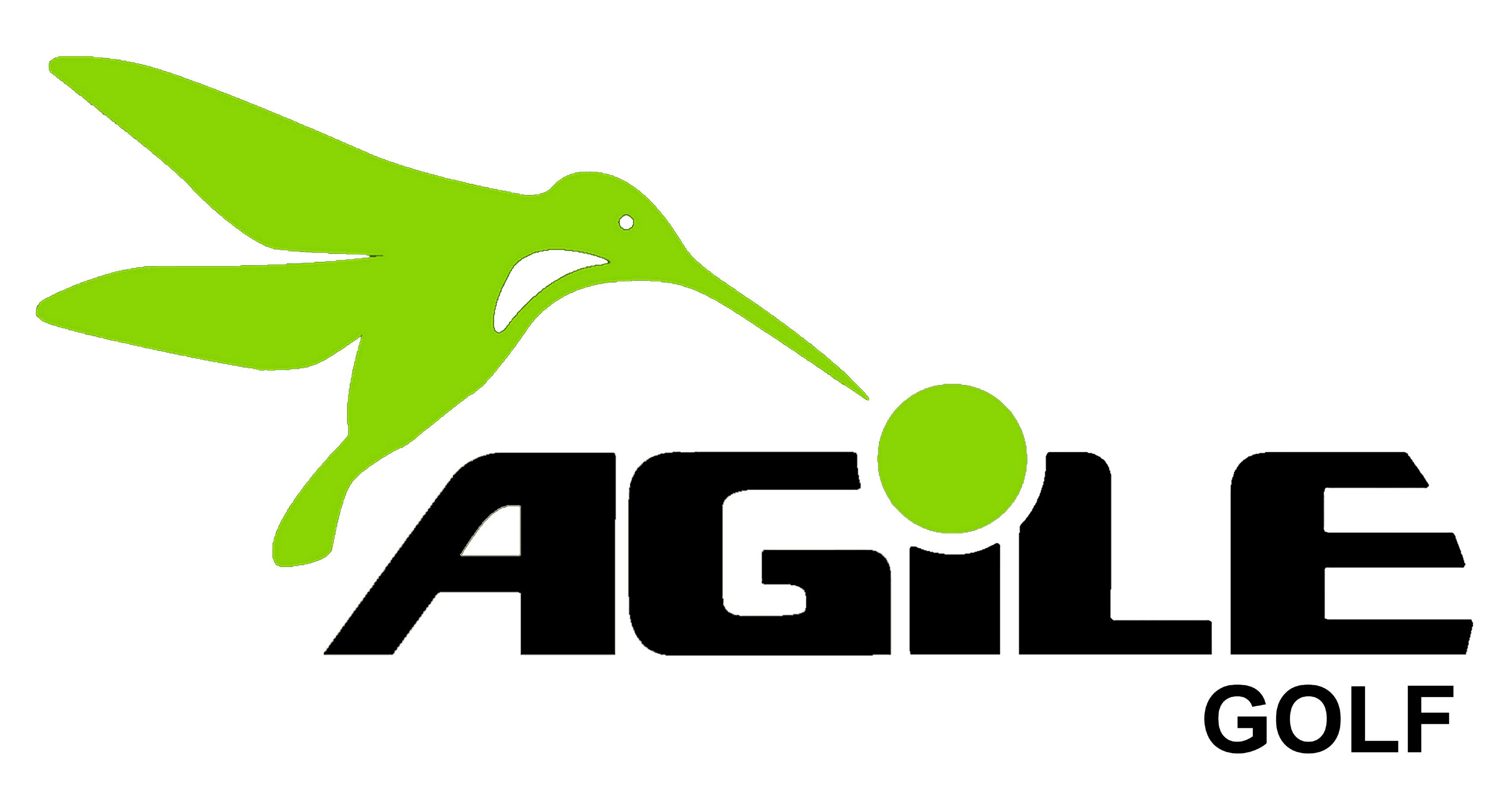 Torneig Agile Golf 2019