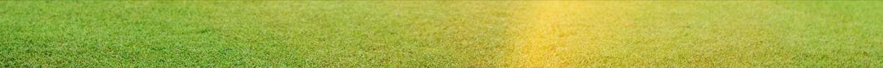 Fons de la gespa d'un camp de golf